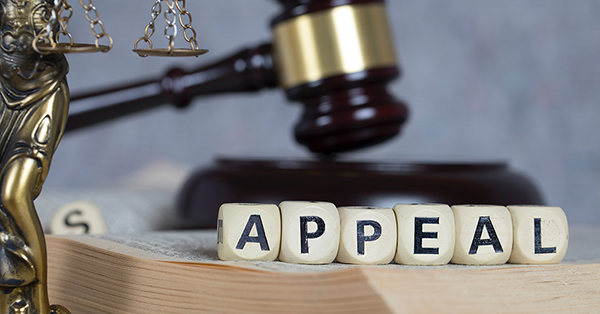 Employment Tribunal Appeal advice from Employment Law Friend